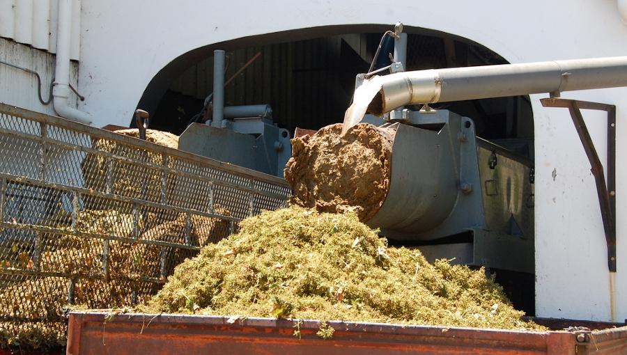 Pozostałości owoców podstawowym substratem do produkcji prądu w biogazowniach