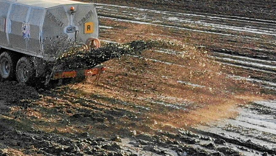 Płynne nawozy naturalne - wszystko o stosowaniu gnojówki i gnojowicy w sadownictwie