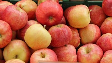 Poprawa wybarwienia jabłek już po zbiorze?