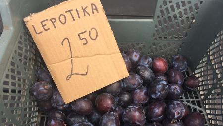 Cacanska - Rana, Lepotica czy Najbolja? Która jugosławiańska odmiana śliwek się opłaca?