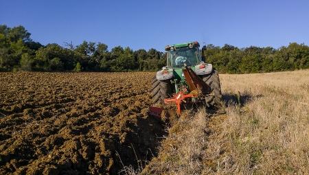 Zakładanie sadu - jedyna okazja na wprowadzenie materii organicznej w głąb gleby
