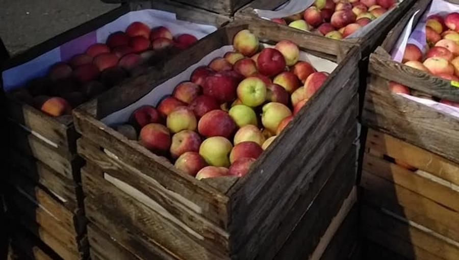 Trudna sytuacja w handlu hurtowym jabłkami, 1 VI 2021