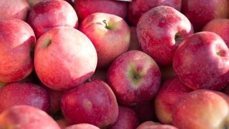 Dramatyczne spadki cen jabłek deserowych. Przemysł stabilny