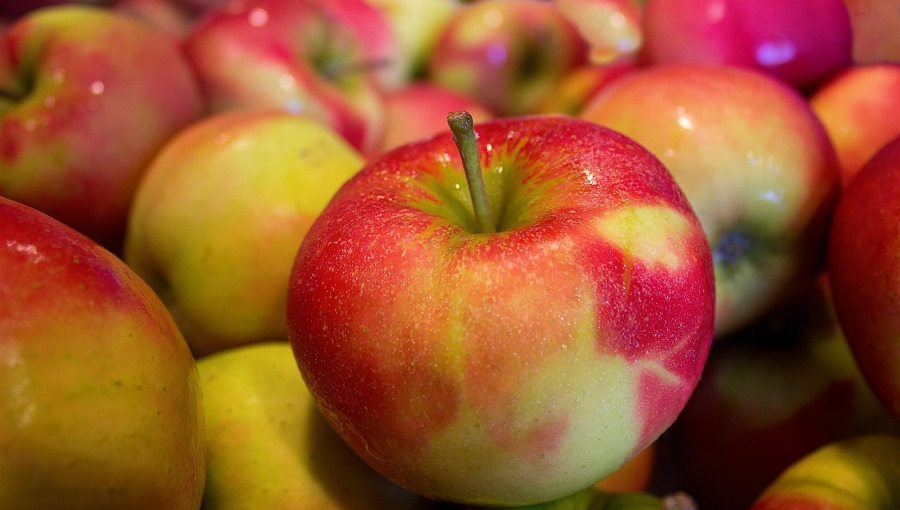 System unijnych oznaczeń produktów rolnych i spożywczych wymaga poprawy