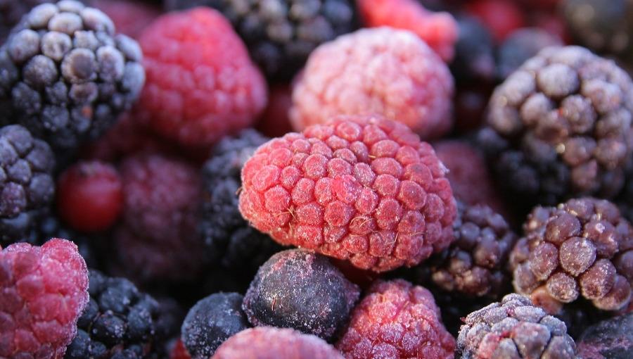 Pandemia a rynek mrożonych owoców - w nowy sezon przetwórnie wejdą z pustymi magazynami?
