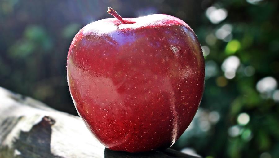Październik wykoloruje jabłka?