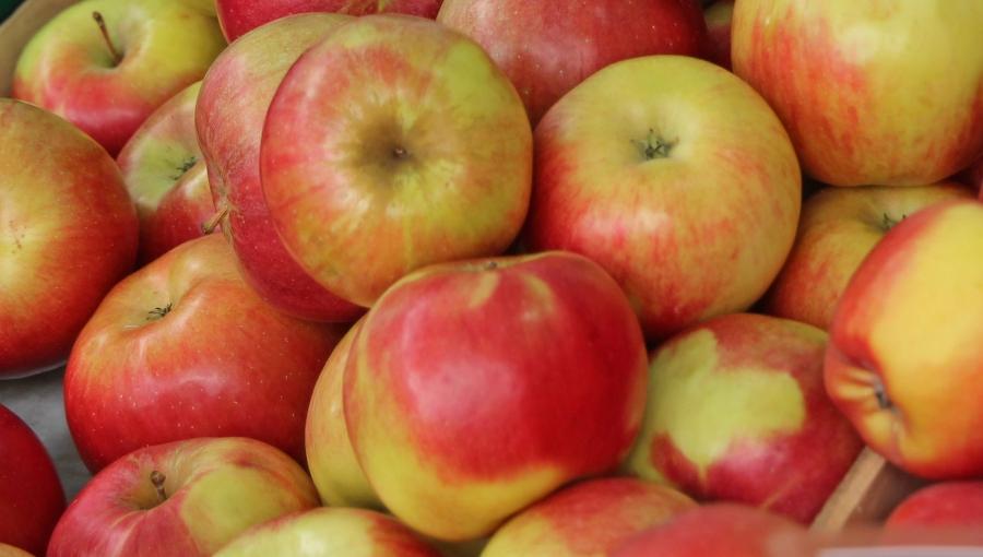 Czy Rosjanie otworzą swój rynek na polskie jabłka w 2021?