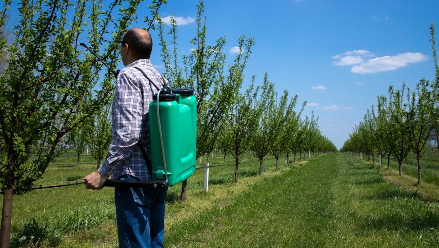 Bayer rozszerza rejestrację popularnych pestycydów o nowe uprawy sadownicze