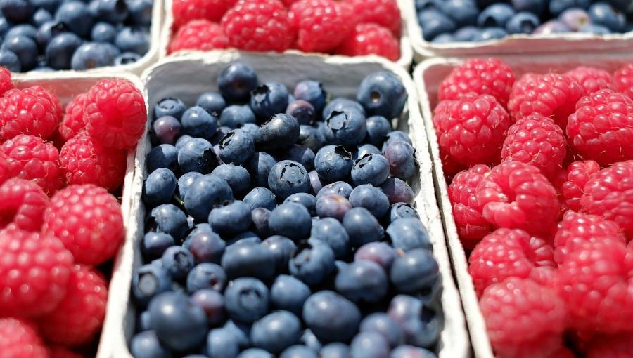 Utrudnienia w transporcie lotniczym wpływają na światowy handel owocami