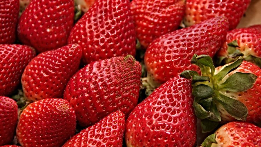 Jak odróżnić polskie truskawki od importowanych?