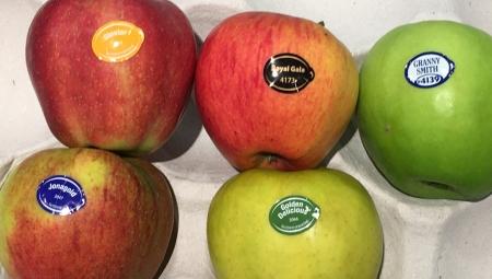 Naklejki - wygodna, ale nieprzyjazna środowisku metoda znakowania owoców