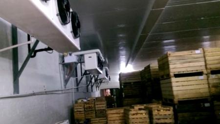 Ukazały się dane WAPA dot. zapasów jabłek w polskich chłodniach. Producenci podważają ich wiarygodność