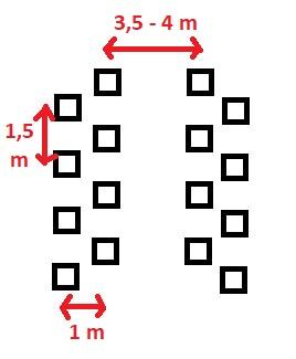 Schemat sadu pasowego