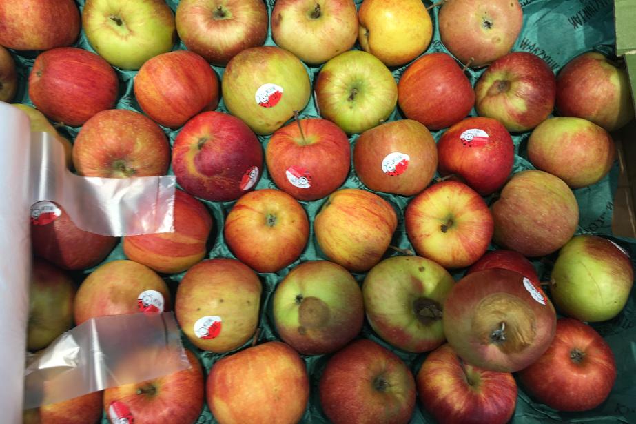 Jabłka przemysłowe w Biedronce