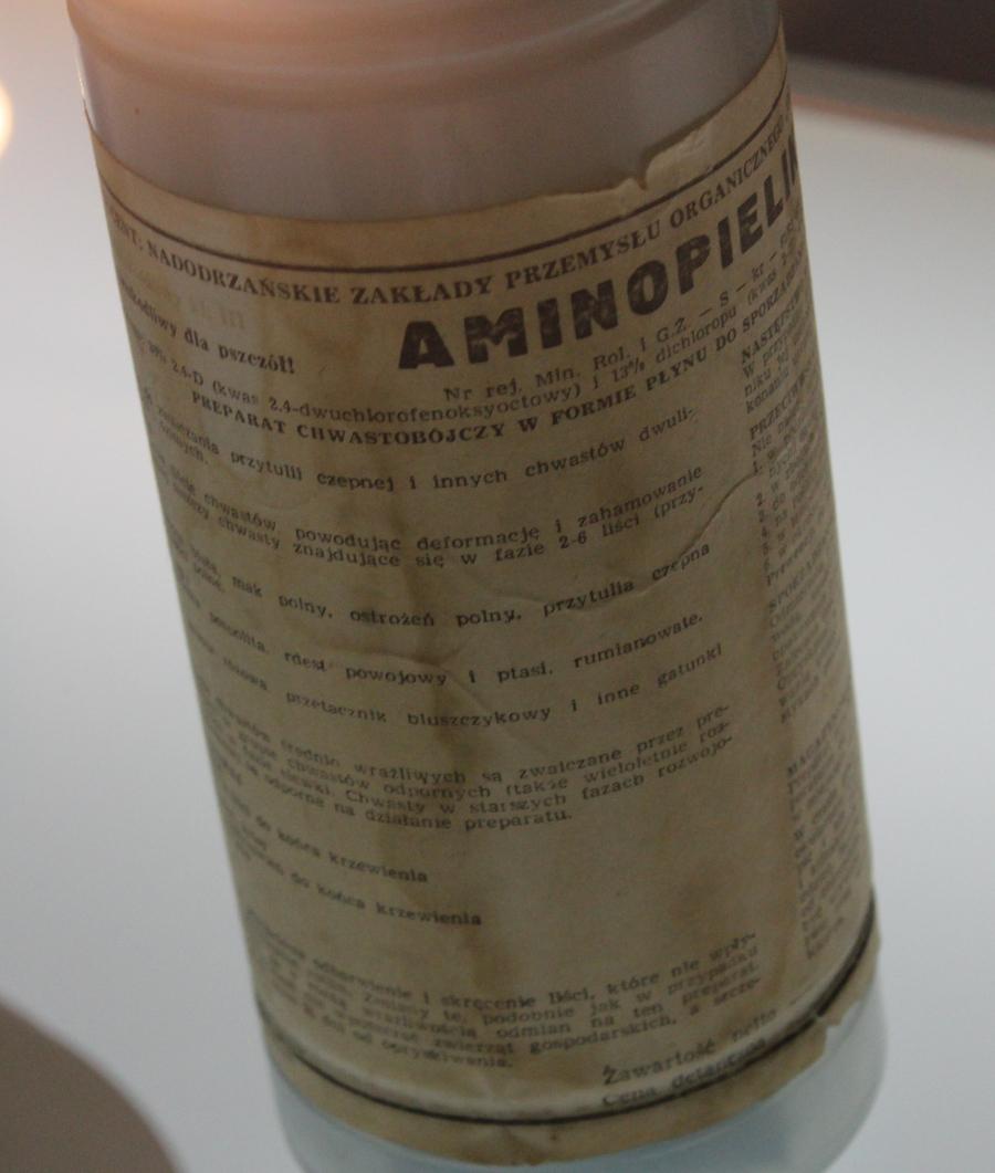 Aminopielik