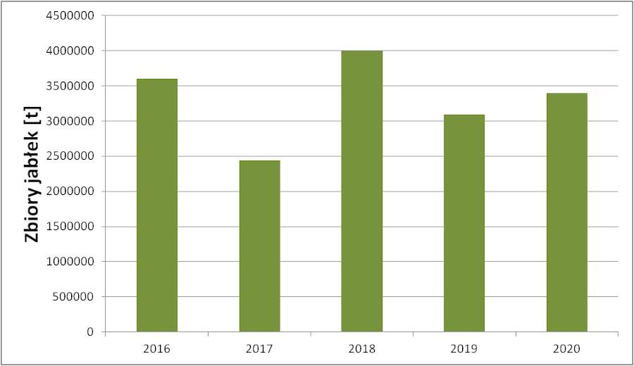Wykres 2. Zbiory jabłek w latach 2016 - 2020 według GUS.